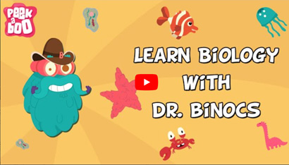 Learn Biology With Dr. Binocs