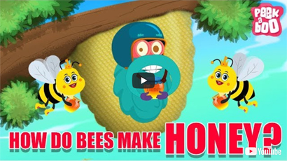 How Do Bees Make Honey? - The Dr. Binocs Show